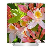 Rhododendrons Garden Floral Art Print Pink Rhodies Shower Curtain