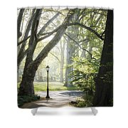 Rhythm Of The Trees Shower Curtain