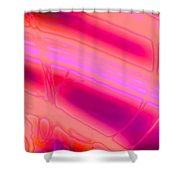 Rib3mlv1  Shower Curtain