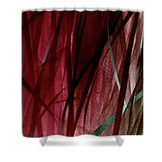 Ribbon And Lace Shower Curtain