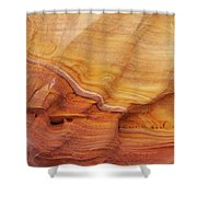 Ribbon Of Rock Shower Curtain