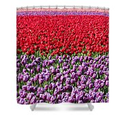 Ribbons Of Color Shower Curtain