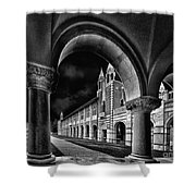 Rice Arches Shower Curtain