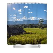 Rice Fields Of Thailand Shower Curtain