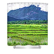 Rice Paddies And Mountains Shower Curtain