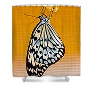 Rice Paper Out From Chrysalis Shower Curtain
