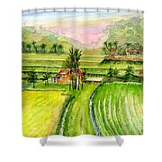 Ricefield Panorama Shower Curtain
