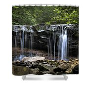 Ricketts Glen Oneida Shower Curtain