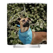 Rico 2 Shower Curtain