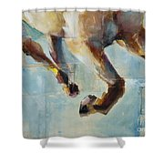 Ride Like You Stole It Shower Curtain