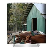 Riding Horses Shower Curtain