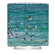 Riding The Wind Shower Curtain