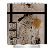 Righteous Judgment Shower Curtain