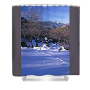 Rincon Trail - Sequoia Shower Curtain