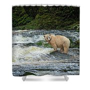 Ringer  Unsigned Shower Curtain