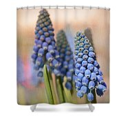 Ringing In Spring Shower Curtain