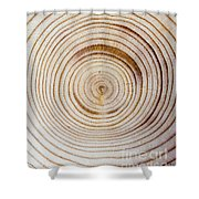 Rings Of A Tree Shower Curtain
