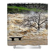 Ringside Seat Shower Curtain