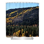 Rio Grande National Forest Shower Curtain