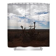 Rio Rancho New Mexico Shower Curtain