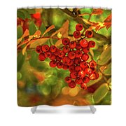 Ripe Berries In Autumn - Patagonia Shower Curtain