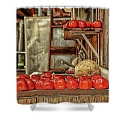 Ripe Tomatoes Shower Curtain