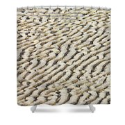 Ripples In The Sand IIi Shower Curtain