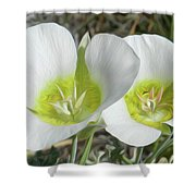 Rise To The Occasion Shower Curtain