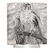 Rising Sun Shower Curtain