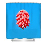 Ristra In The Sky Shower Curtain