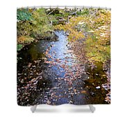 River 3 Shower Curtain