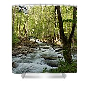 River At Greenbrier Shower Curtain