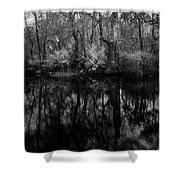 River Bank Palmetto Shower Curtain