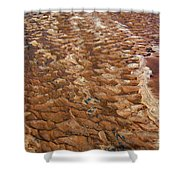 River Bed Shower Curtain
