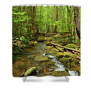 River Crossing On The Maryland Appalachian Trail Shower Curtain