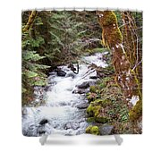 River For Your Thoughts Shower Curtain