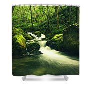 River In A Green Forest Shower Curtain