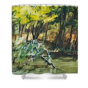 River In Summer Shower Curtain