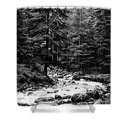 River In The Mountains Shower Curtain