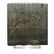 River In The Spring Shower Curtain