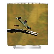River Jewelwing Shower Curtain