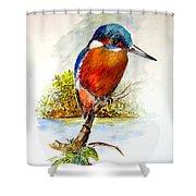 River Kingfisher Shower Curtain