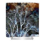 River Oak Dream Shower Curtain