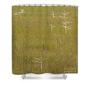 River Of Grass 1a Shower Curtain