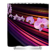 River Of Orchids Shower Curtain