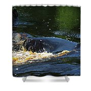 River On The Rocks II Shower Curtain