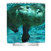 River Otter Shower Curtain