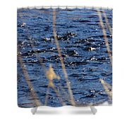 River Ripples Shower Curtain