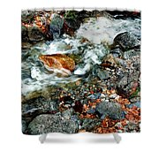River Rock Leaves Shower Curtain