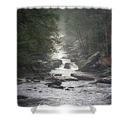 River Run Shower Curtain